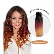 "20"" #2/Red/Brown Ombre Straight 100% Remy Human Hair"